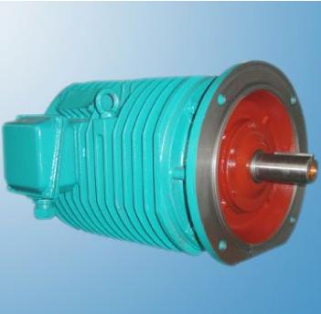 YGP系列辊道用变频调速三相异步电动机